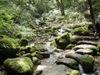 f:id:honda-jimusyo:20110806115220j:plain