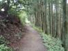 f:id:honda-jimusyo:20110806124325j:plain