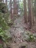 f:id:honda-jimusyo:20110806124859j:plain