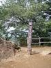 f:id:honda-jimusyo:20110806131901j:plain