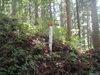 f:id:honda-jimusyo:20110807115051j:plain