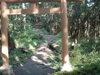 f:id:honda-jimusyo:20110824153311j:plain