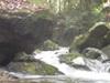 f:id:honda-jimusyo:20110826084918j:plain