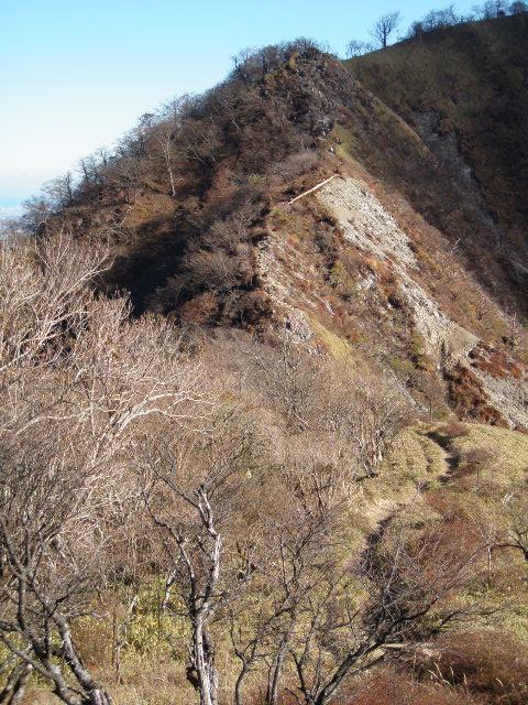 f:id:honda-jimusyo:20121110135109j:plain