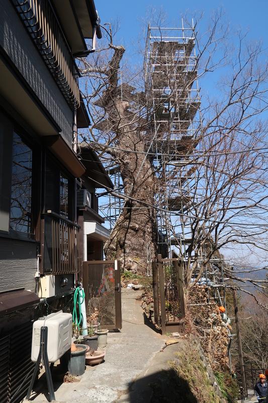 f:id:honda-jimusyo:20190320120059j:plain