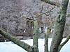 f:id:honda-jimusyo:20200918181216j:plain