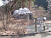 f:id:honda-jimusyo:20200918181827j:plain