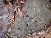 f:id:honda-jimusyo:20200918181918j:plain