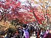 f:id:honda-jimusyo:20200920163026j:plain