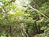 f:id:honda-jimusyo:20200920180449j:plain
