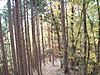 f:id:honda-jimusyo:20200921101754j:plain