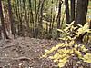 f:id:honda-jimusyo:20200921101758j:plain