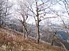 f:id:honda-jimusyo:20200921102106j:plain