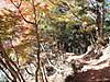f:id:honda-jimusyo:20200921102251j:plain