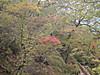 f:id:honda-jimusyo:20200921151926j:plain
