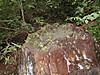 f:id:honda-jimusyo:20200921154818j:plain