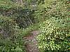 f:id:honda-jimusyo:20200921161427j:plain