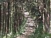 f:id:honda-jimusyo:20200921162007j:plain