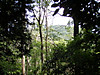 f:id:honda-jimusyo:20200921171519j:plain