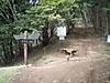 f:id:honda-jimusyo:20200921171624j:plain