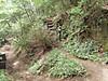 f:id:honda-jimusyo:20200921171838j:plain
