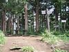 f:id:honda-jimusyo:20200921171905j:plain
