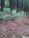 f:id:honda-jimusyo:20200921184530j:plain