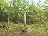 f:id:honda-jimusyo:20200921184646j:plain