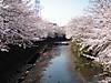 f:id:honda-jimusyo:20200921194746j:plain
