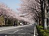 f:id:honda-jimusyo:20200921194859j:plain