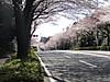 f:id:honda-jimusyo:20200921194903j:plain