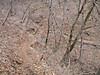 f:id:honda-jimusyo:20200921195036j:plain