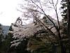 f:id:honda-jimusyo:20200921195234j:plain