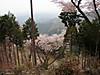 f:id:honda-jimusyo:20200921195250j:plain