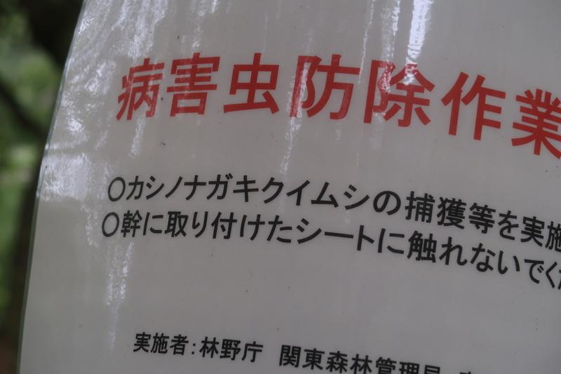 f:id:honda-jimusyo:20201004132051j:plain