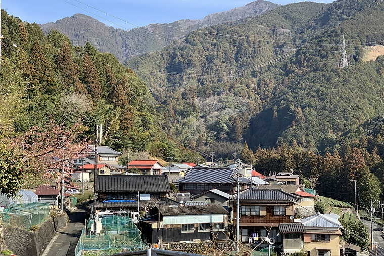 奥静岡大沢地区の景色