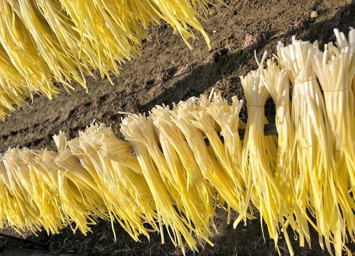 岡山のおすすめローカル食材・黄ニラ