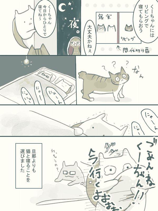 猫アレルギーと寝室