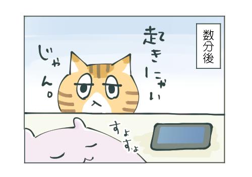 スヌーズ機能とネコ