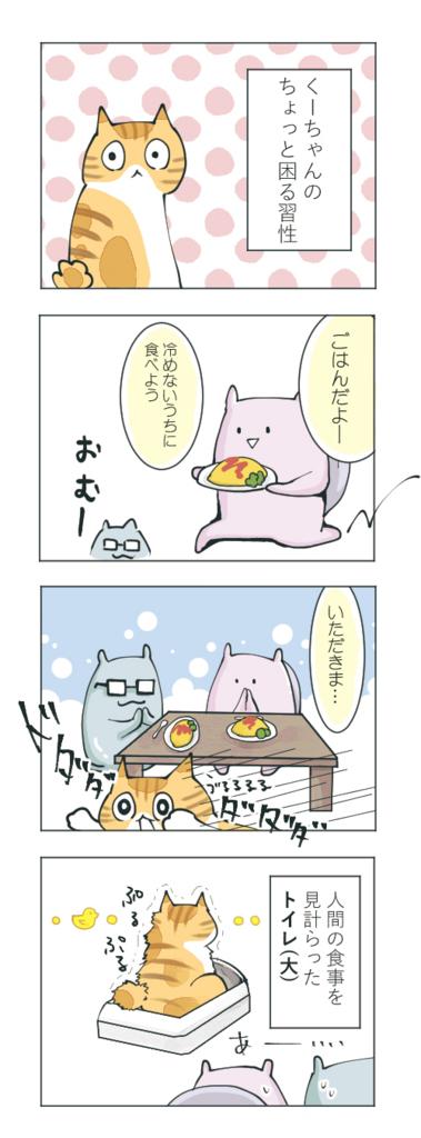 猫とトイレのタイミング