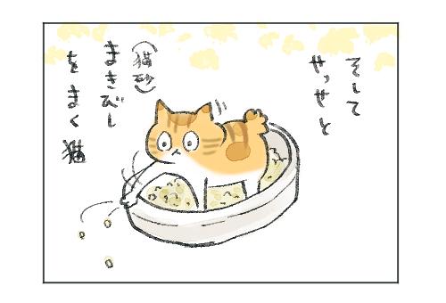 猫砂をまき散らす