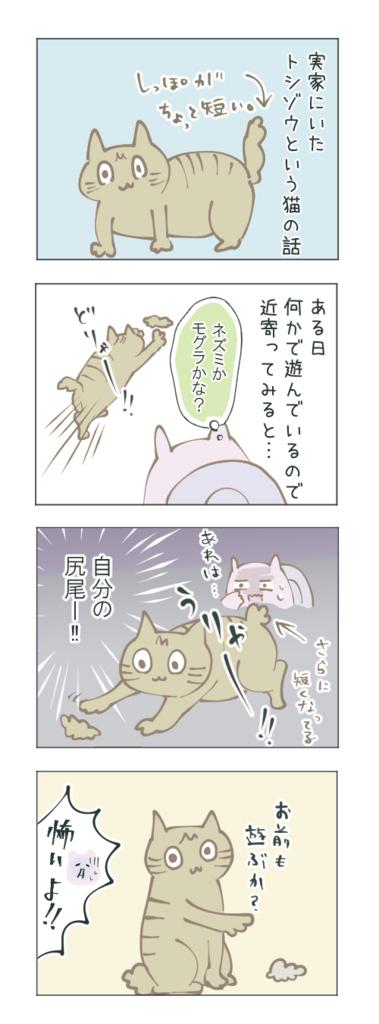 猫のしっぽが取れた話