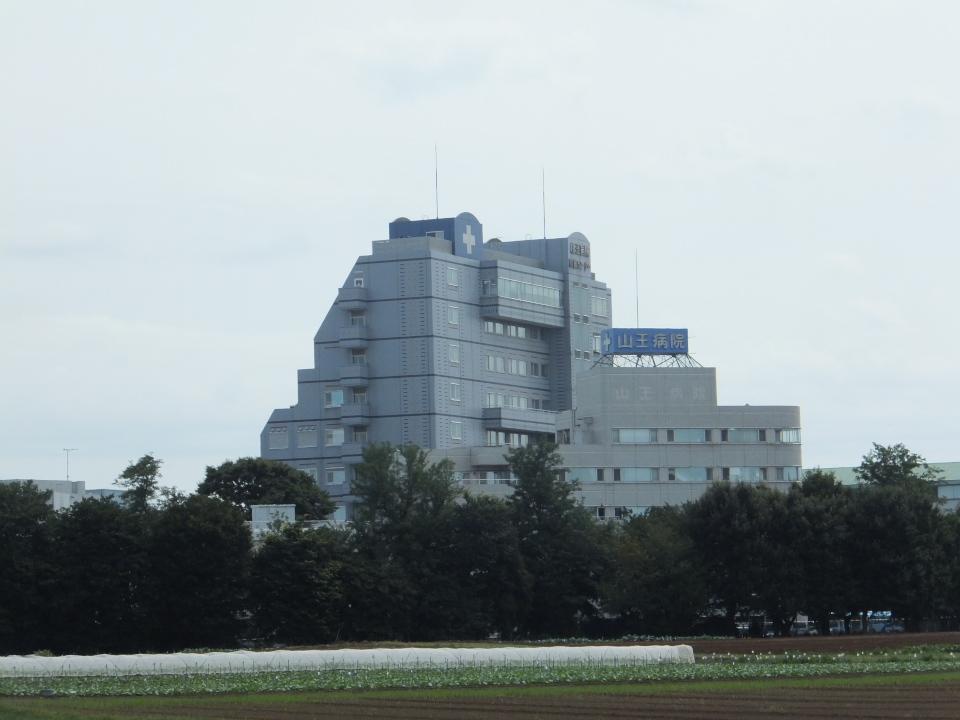 病院 千葉 山王