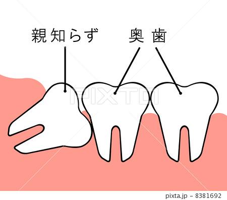 f:id:honey-dental:20200313002544j:plain