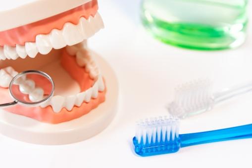 f:id:honey-dental:20200803231855j:plain