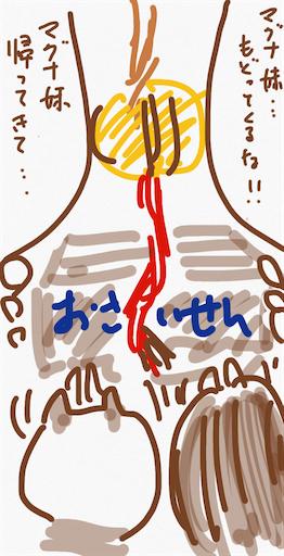 f:id:honeyhornet:20200202090033p:image