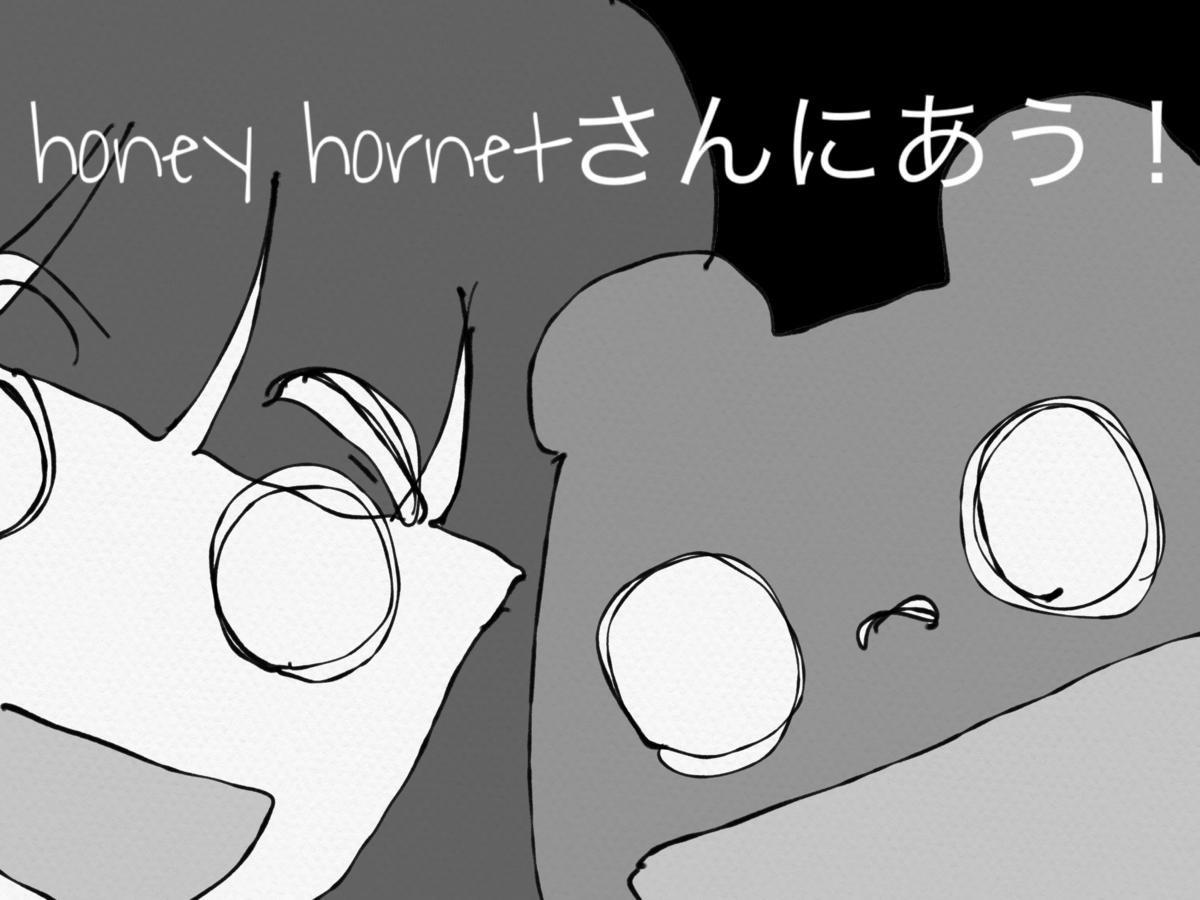 f:id:honeyhornet:20210130001918p:plain