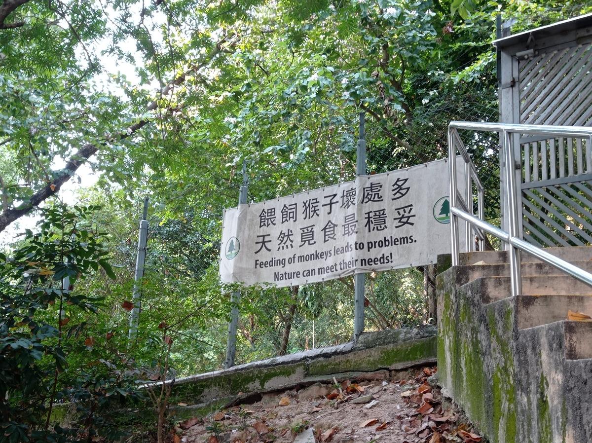 f:id:hongkonghongkong:20210401132204j:plain
