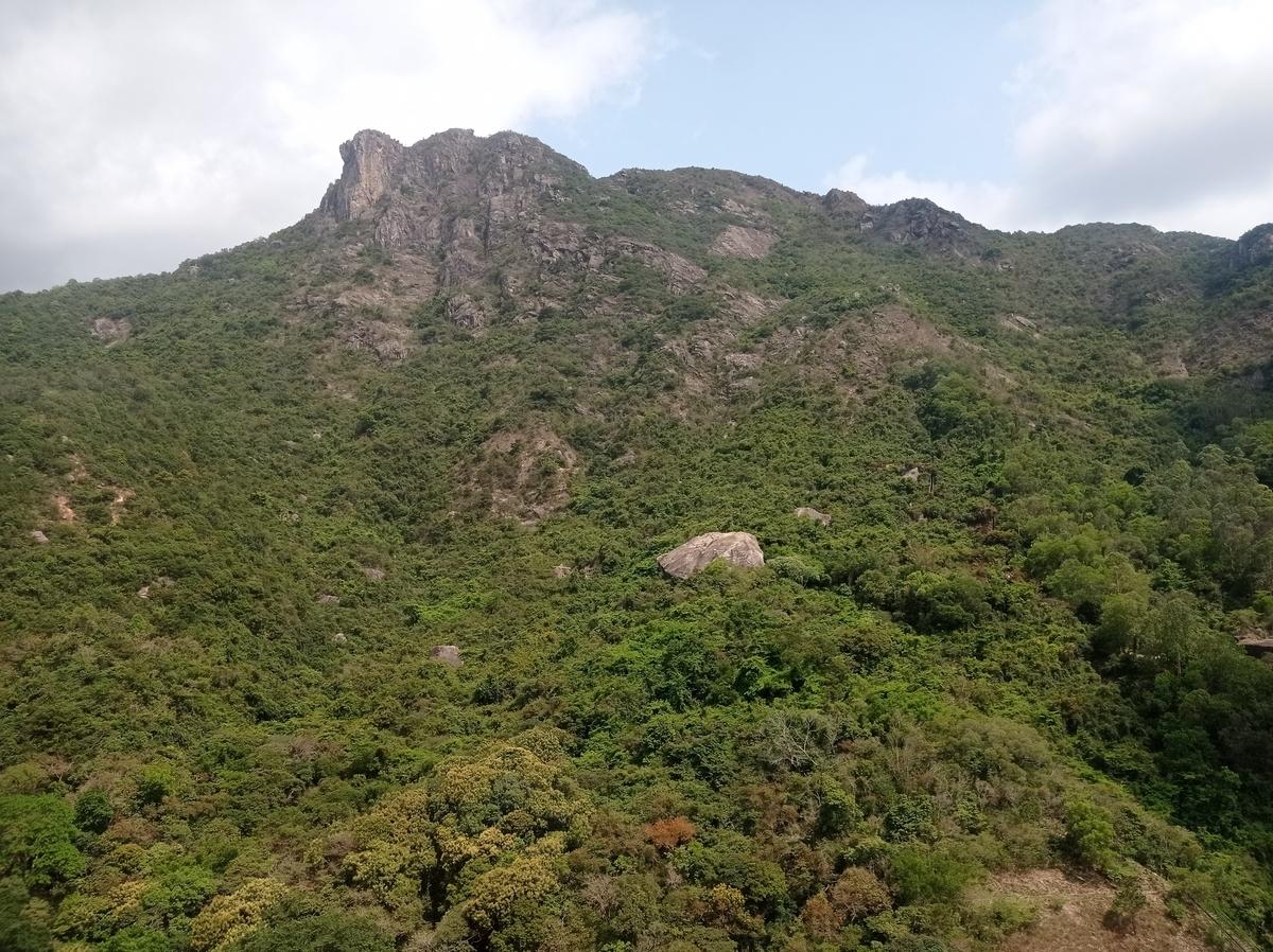 f:id:hongkonghongkong:20210401134138j:plain