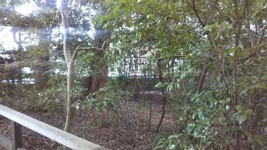 f:id:hongo-ueno-realestate:20181025124454j:plain